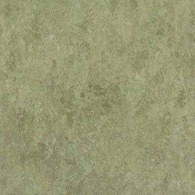 linoleum tarkett veneto xf 753 sage muster muster. Black Bedroom Furniture Sets. Home Design Ideas